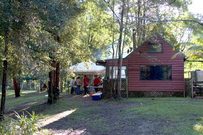 brush cabin