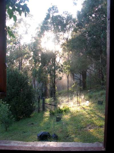 sun and rain 2