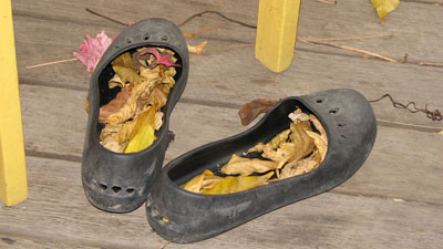 shoes-leaves
